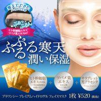 500_premium_facemask